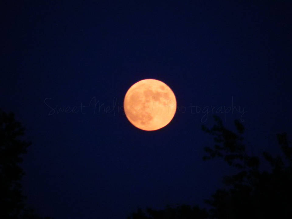 almost-full-strawberry-moon-calcium-ny-resize-960-h2o
